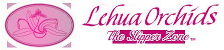 Lehua Orchids | Paphiopedilum, Phragmipedium, Angraecum and Lycaste | Artists in Orchid Creation